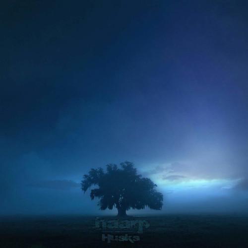 HAARP-'HUSKS vinyl LP-Brand new/Still Sealed