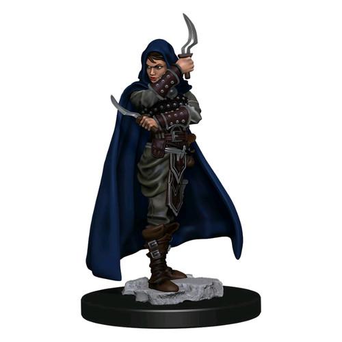 Pathfinder - Human Rogue Female Premium Figure-WZK77501-WIZKIDS GAMES