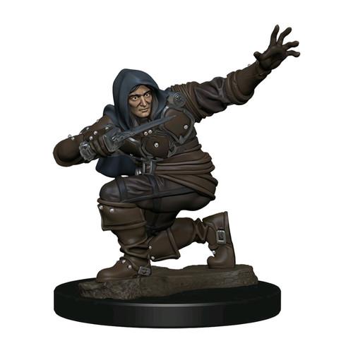 Pathfinder - Human Rogue Male Premium Figure-WZK77500-WIZKIDS GAMES