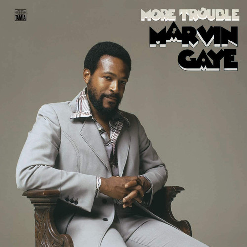 GAYE,MARVIN-More Trouble Vinyl LP-Brand New-Still Sealed