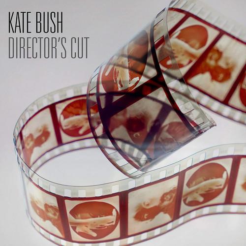 BUSH, KATE-DIRECTOR'S CUT- Vinyl LP Brand New/Still Sealed