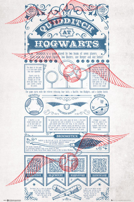Harry Potter - Quiddich At Hogwarts-Poster-Laminated available-91cm x 61cm-Brand New-FP4512