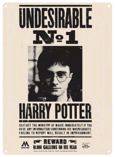 Harry Potter - Undesirable No 1 Small Tin Sign-21cm x 15cm-HMBSSA5HP16