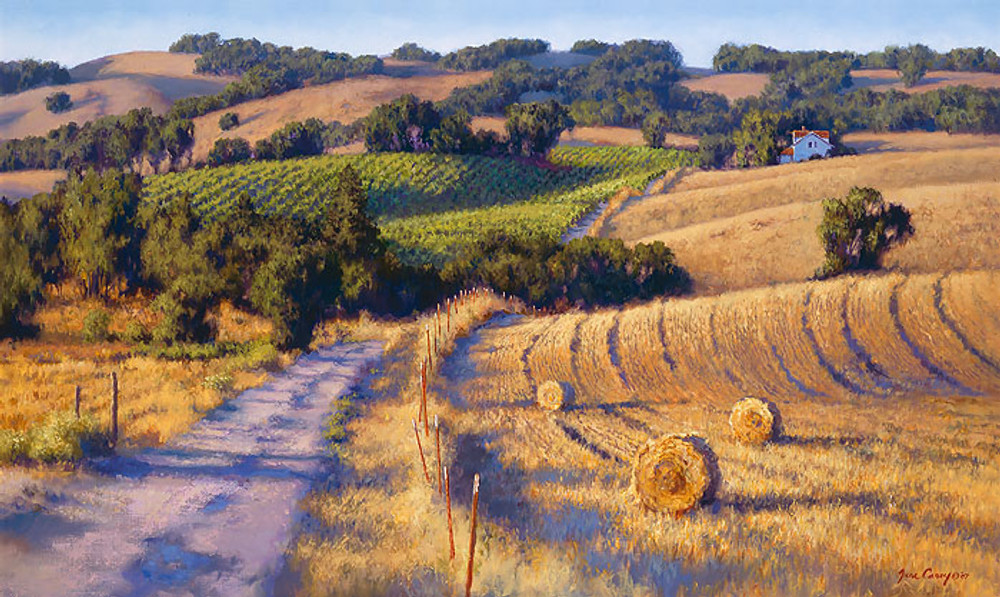 Old Napa Road by June Carey
