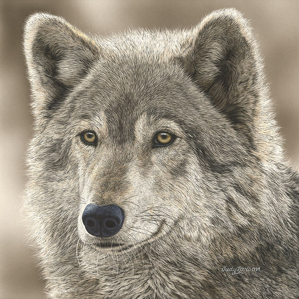 The Play Wolf by Judy Larson SMALLWORK CANVAS EDITION
