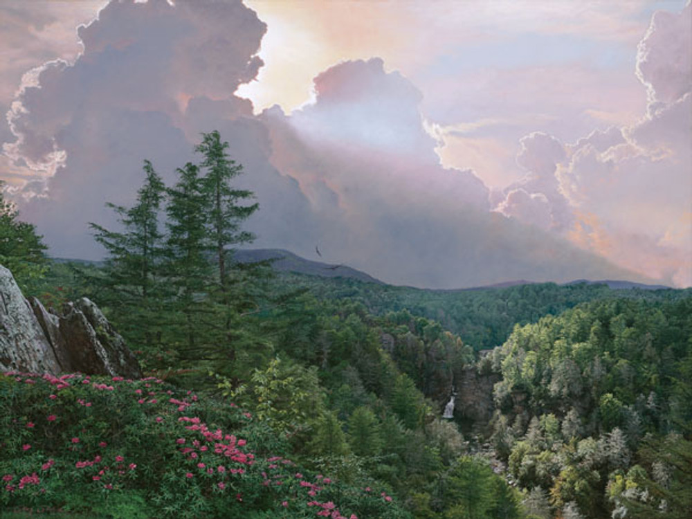 Where the Rhododendron Grow unframed