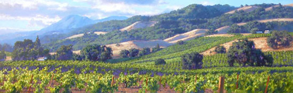 Song of the Wine Country, June Carey  LIMITED EDITION CANVAS