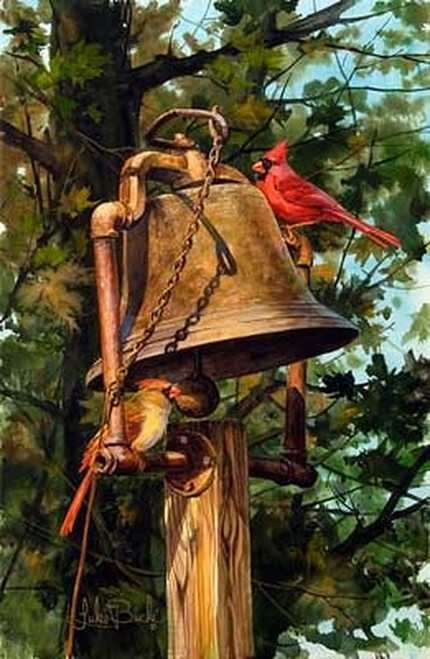 Cardinals and Bell