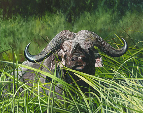 Mbogo Mkuu, by Guy Combes LIMITED EDITION CANVAS