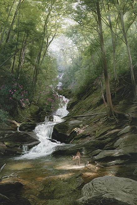 North Carolina scene