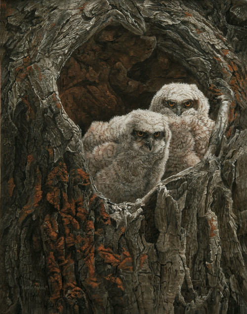 baby owl chick painting