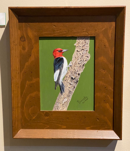 red-headed woodpecker Al Dornisch