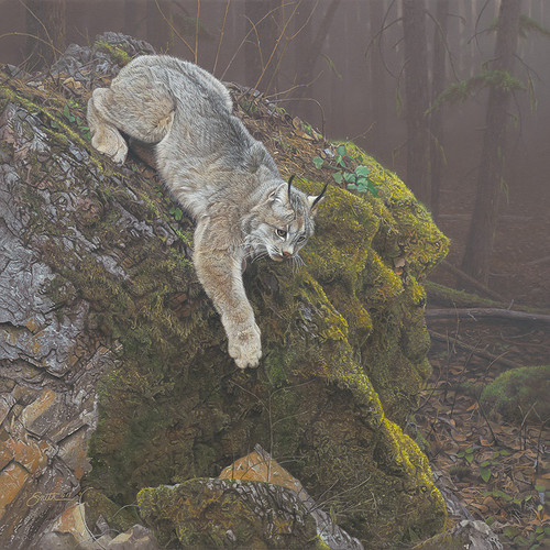 Lynx painting