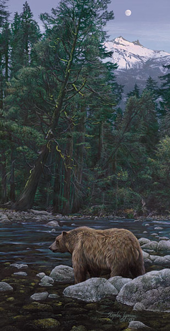 Moonbear Listens to the Earth, Stephen Lyman ANNIVERSARY EDITION CANVAS