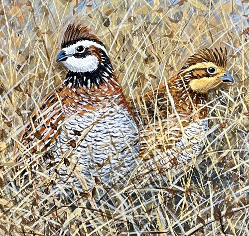 Mr. and Mrs. Bob White (Quail Painting) by Broderick Crawford