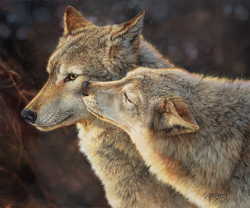 Wolf Kiss, Bonnie Marris SMALLWORK CANVAS EDITION