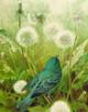 Indigo Bunting SONGBIRD TRIO by Robert Bateman