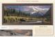 Sneak Peaks - Bear by Rod Frederick catalog