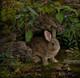 Rabbit painting by Karla Mann