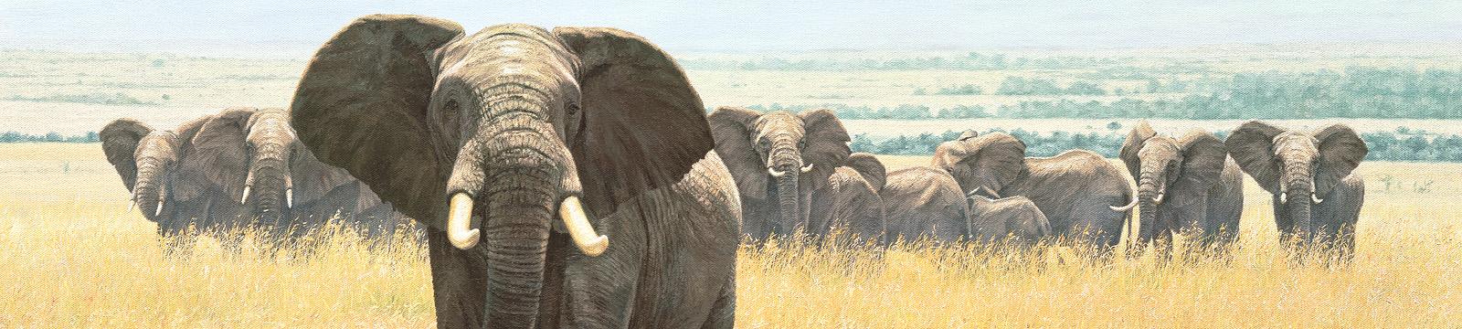 Simon Combes African wildlife artist