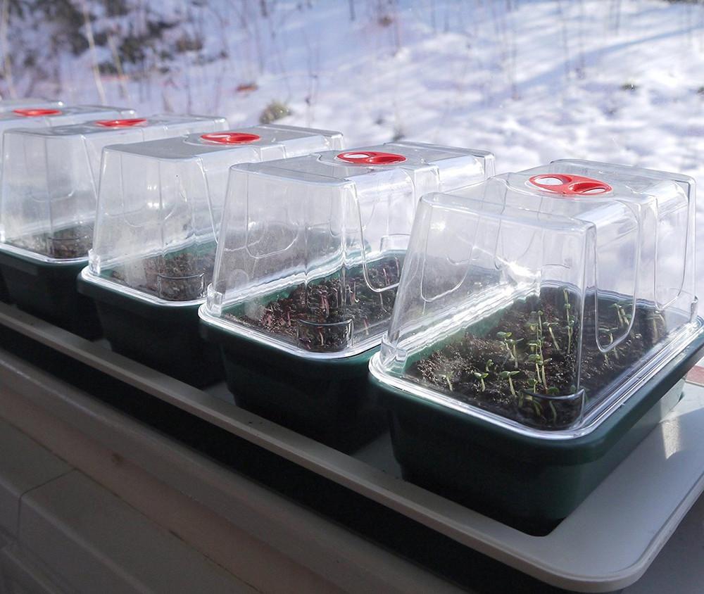 Britten & James® Windowsill Nursery 7 in 1 Heated Windowsill Propagator set.