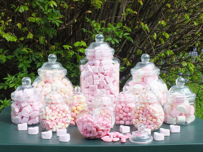 PLASTIC JAR PARTY PACK OF 12 Assorted Jars with Victorian Style Lids