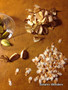 Dioscorea elephantipes FRESH SEEDS! (Qty - 100)