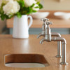 Perrin and Rowe Mayan 4338 Kitchen Tap