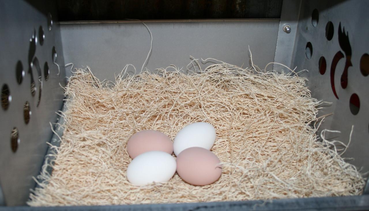 Excelsior Nest Pads