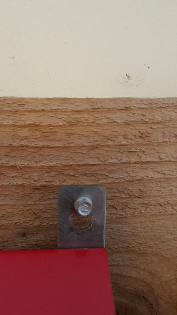 Key shaped hole used to hang the 2 hole nest box.