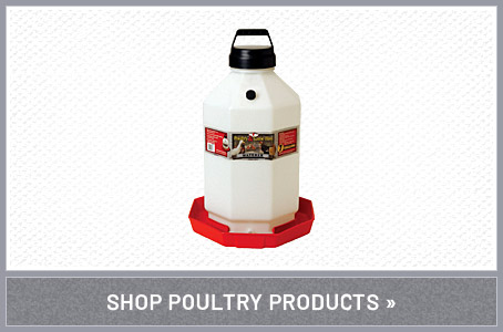Shop Poultry Products