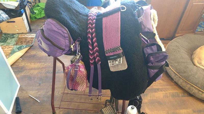 Purple variegated reins and lavender girth
