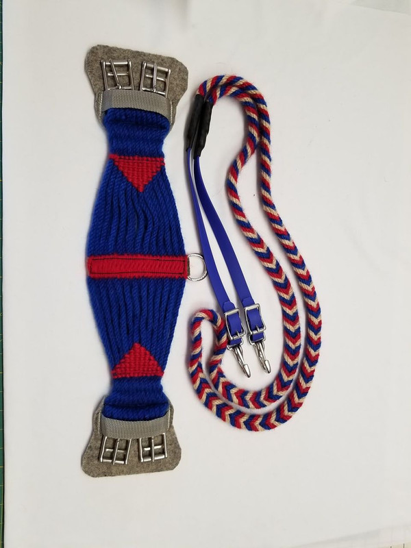 Red White and Blue reins and Roper style English girth