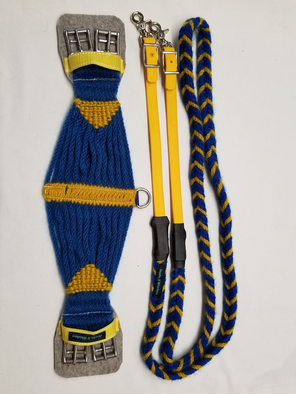 Blue and yellow reins with a Roper style girth