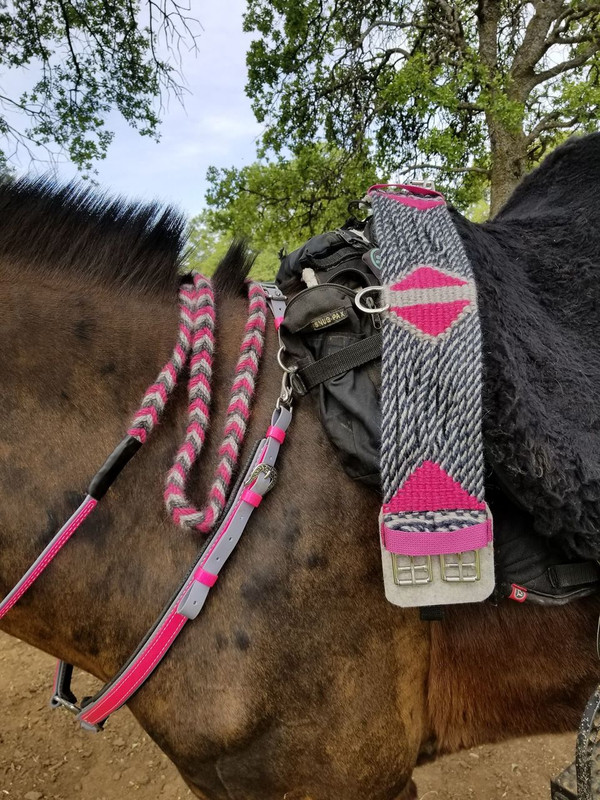 Pink and gray reins , Navy gray twist with pink accent girth