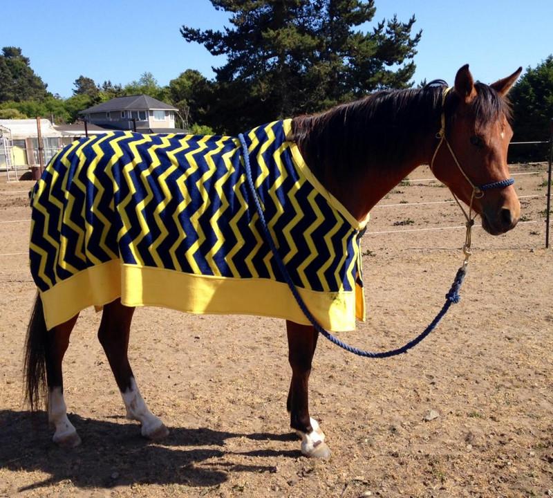 HnW Custom Fleece Cooler