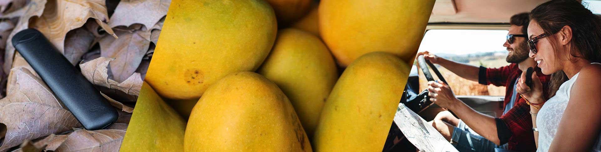 Riptide Ripstick Mango Flavour Disposable Pod