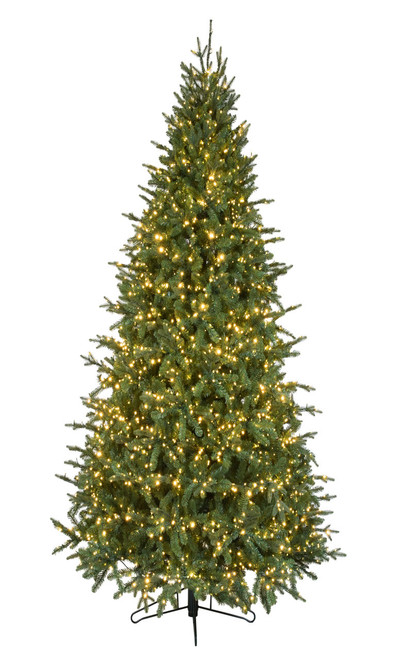 12' Slim Canadian Balsam Fir Christmas Tree