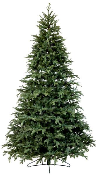 Frasier Fir Christmas Tree.9 Full Carolina Fraser Fir