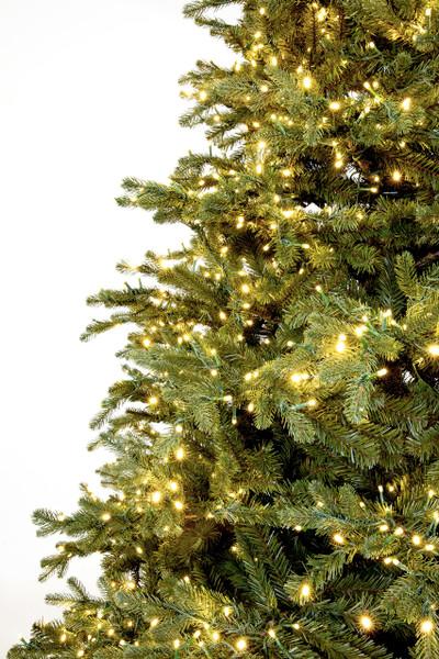 Frasier Fir Christmas Tree.12 Slim Carolina Fraser Fir