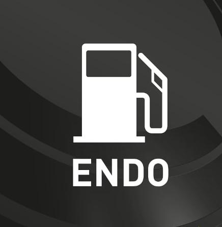 endogenous.png