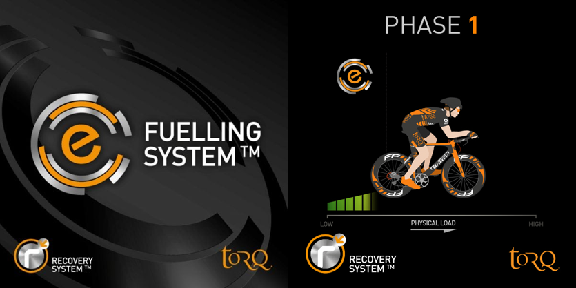 recovery-system-overview-phase1.png
