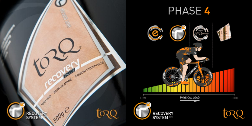 recovery-system-overview-phase4.png