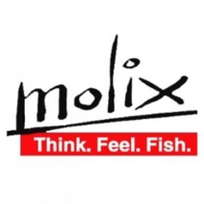 Molix Fishing