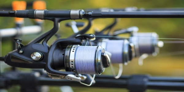best-spinning-reel.jpg
