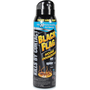 Black Flag Insect Spray Diversion Safe DS-BFLAG
