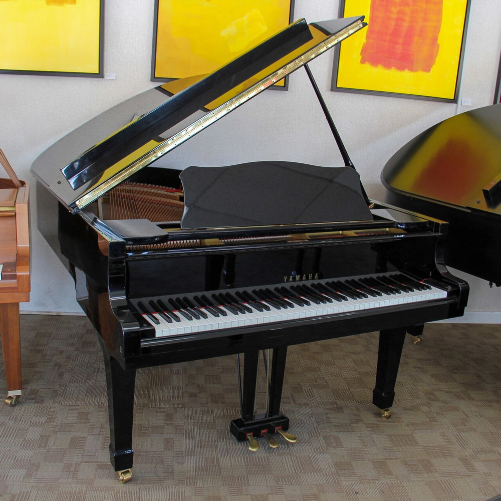 Yamaha C5 Yamaha 6 7 Conservatory Collection Grand Piano or Polished Ebony w/ Bench