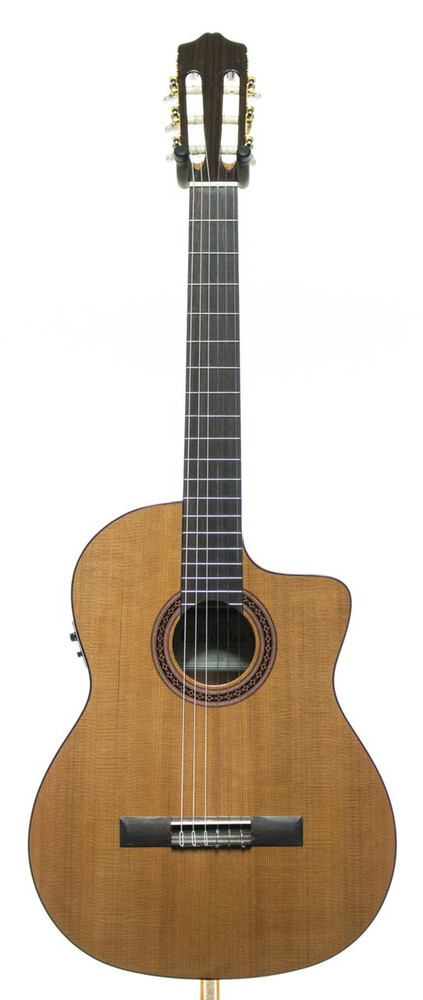 Cordoba Cordoba C5-CE Solid Canadian Red Cedar Top Acoustic/Electric Classical