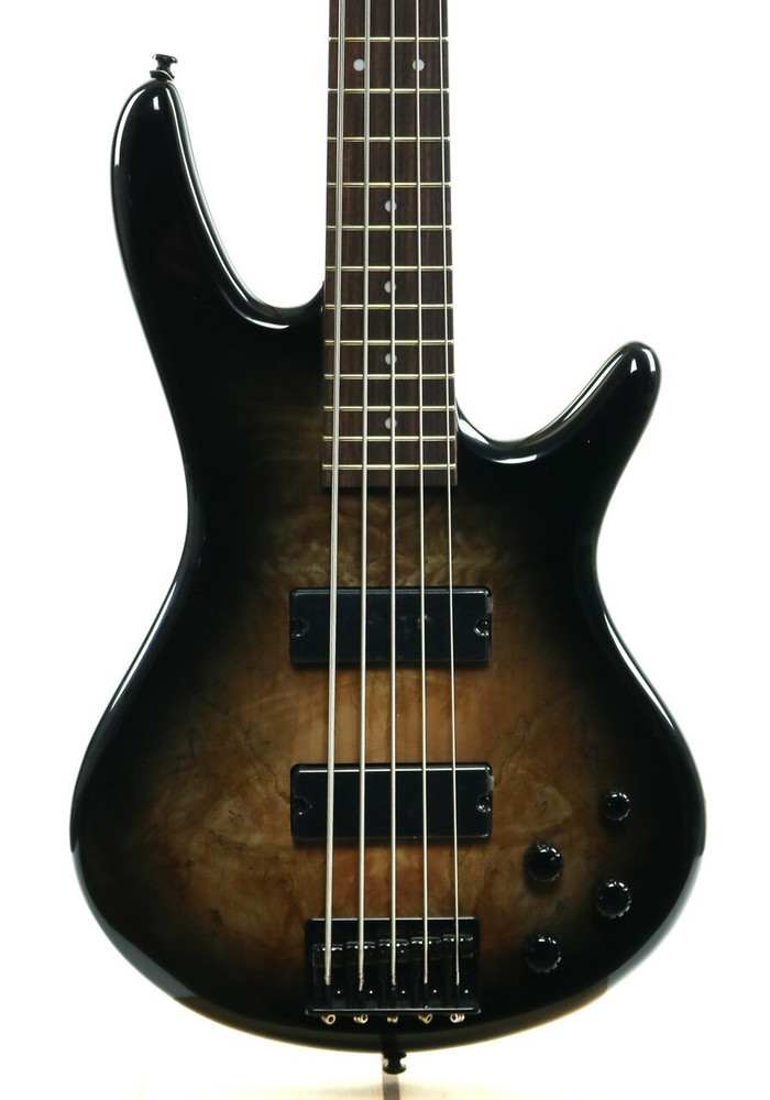 Ibanez Ibanez GSR205SM GIO 5-String Electric Bass Guitar Natural Gray Burst