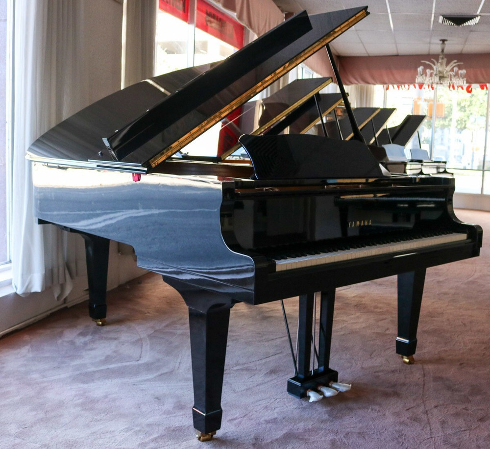 Yamaha Yamaha C5L 67 Conservatory Collection Grand Piano Polished Ebony w/ Bench